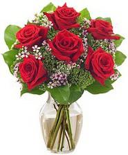 Kız arkadaşıma hediye 6 kırmızı gül  Niğde hediye çiçek yolla