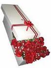 Niğde çiçek yolla , çiçek gönder , çiçekçi   11 adet 1.kalite magnum güller