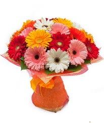 Renkli gerbera buketi  Niğde online çiçek gönderme sipariş