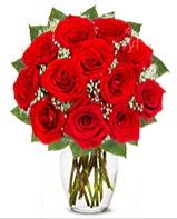 12 adet vazoda kıpkırmızı gül  Niğde internetten çiçek satışı