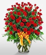 Görsel vazo içerisinde 101 adet gül  Niğde internetten çiçek satışı