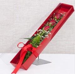 Kutu içerisinde 3 adet kırmızı gül  Niğde çiçek siparişi sitesi