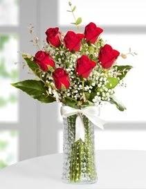 Cam vazoda 7 adet kırmızı gül  Niğde çiçek gönderme sitemiz güvenlidir