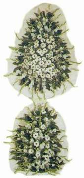 Niğde ucuz çiçek gönder  Model Sepetlerden Seçme 3