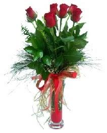 vazo içerisinde 5 kırmızı gül  Niğde hediye sevgilime hediye çiçek