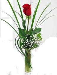 Cam içerisinde 1 kırmızı gül  Niğde güvenli kaliteli hızlı çiçek