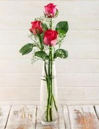 Cam içerisinde 3 kırmızı gül  Niğde İnternetten çiçek siparişi