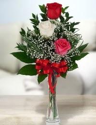 Camda 2 kırmızı 1 beyaz gül  Niğde çiçek yolla