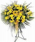 Niğde çiçek online çiçek siparişi  Sari kazablanka Ferforje