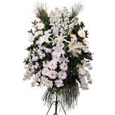 Niğde internetten çiçek satışı  Ferforje beyaz renkli kazablanka