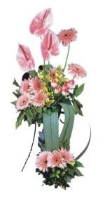 Niğde hediye sevgilime hediye çiçek  Pembe Antoryum Harikalar Rüyasi