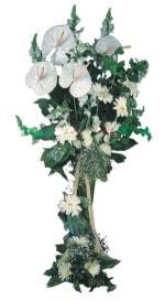 Niğde 14 şubat sevgililer günü çiçek  antoryumlarin büyüsü özel