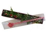 Niğde çiçek gönderme  3 adet gül.kutu yaldizlidir.