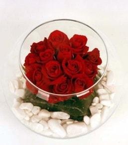 Cam fanusta 11 adet kırmızı gül  Niğde online çiçekçi , çiçek siparişi