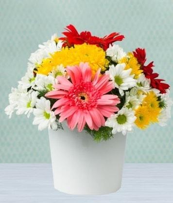 Seramik Vazoda Gelbera ve Papatya  Niğde online çiçekçi , çiçek siparişi