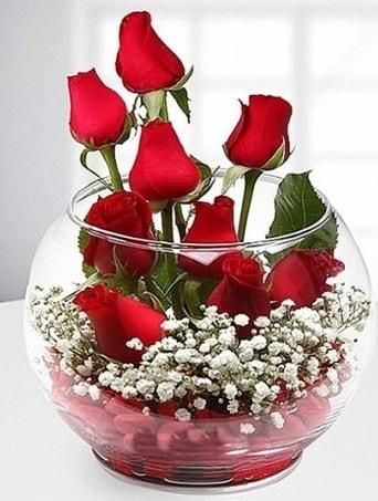 Kırmızı Mutluluk fanusta 9 kırmızı gül  Niğde çiçek satışı