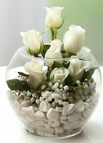 Beyaz Mutluluk 9 beyaz gül fanusta  Niğde çiçek satışı