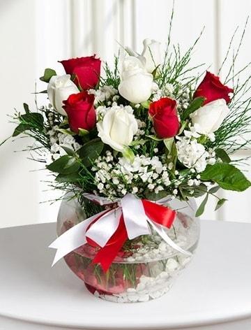 Aşk Küresi  5 beyaz 5 kırmızı gül fanusta  Niğde çiçek , çiçekçi , çiçekçilik