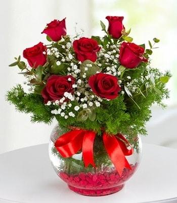 fanus Vazoda 7 Gül  Niğde çiçek gönderme sitemiz güvenlidir