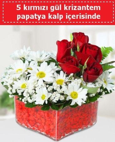 mika kalp içerisinde 5 kırmızı gül papatya  Niğde online çiçekçi , çiçek siparişi
