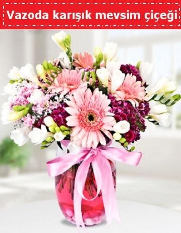 Vazoda karışık mevsim çiçeği  Niğde çiçek gönderme sitemiz güvenlidir