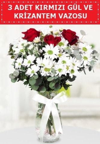 3 kırmızı gül ve camda krizantem çiçekleri  Niğde online çiçekçi , çiçek siparişi