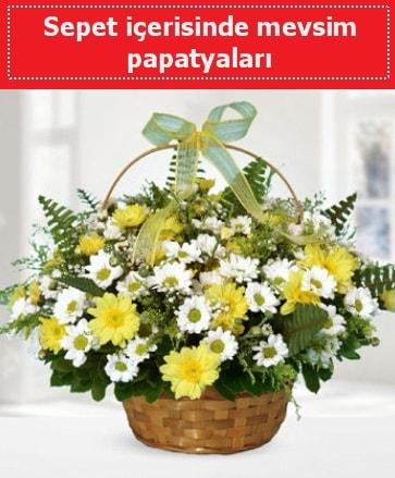 Sepet içerisinde mevsim papatyaları  Niğde çiçek yolla