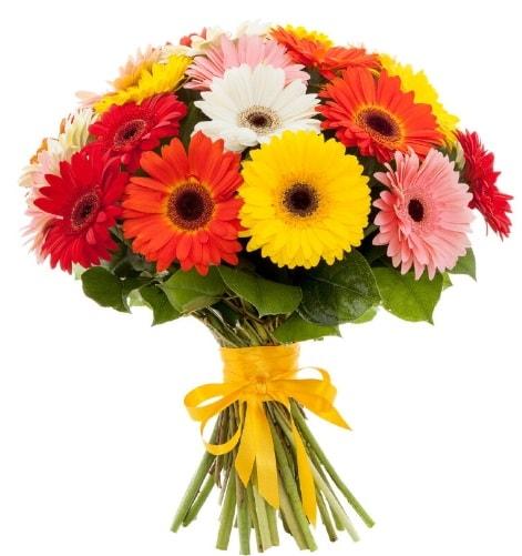 Gerbera demeti buketi  Niğde İnternetten çiçek siparişi