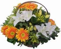 Niğde çiçek servisi , çiçekçi adresleri  sepet modeli Gerbera kazablanka sepet